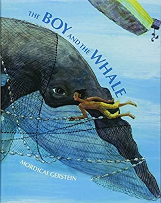 Image result for the boy and the whale gerstein
