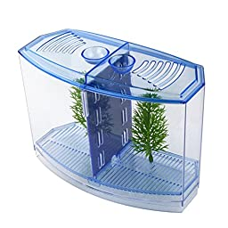 Saim Betta Bow 2-Compartment Fish Tank Kit Aquarium Tank