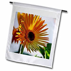 PS Flowers - Sunny Orange Flower - Floral Photography - Spring - 12 x 18 inch Garden Flag (fl_52798_1)