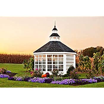 Amazon.com: Little Cottage Company 10x16-LCG-WPNK Colonial ...