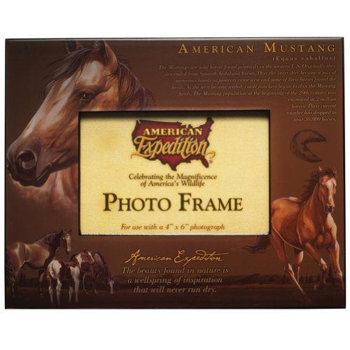 (American Expeditions Mustang Photo Frame )