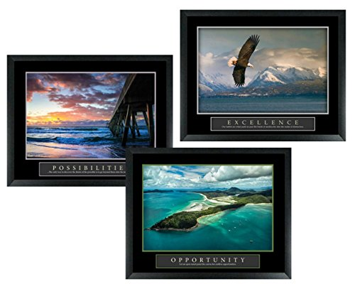 3 Framed Excellence Eagle Possibilities Ocean Pier Opportunity Tropical Island Motivational Posters Home Office