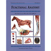 FUNCTIONAL ANATOMY (Threshold Picture Guides Book 43)