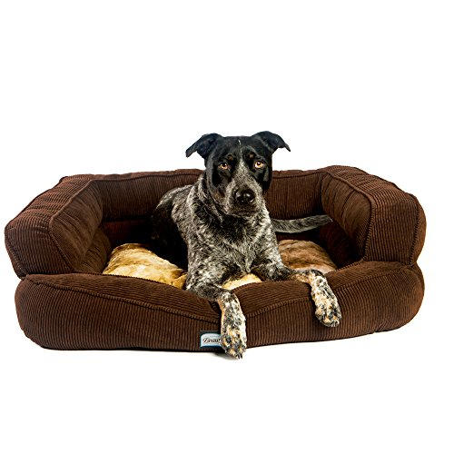Simmons Beautyrest Colossal Rest Premium Dog - Dog Couch Bed Large