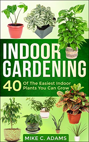 Indoor Gardening Plants Indoor gardening 40 of the easiest indoor plants you can grow indoor gardening 40 of the easiest indoor plants you can grow house plants and workwithnaturefo