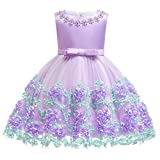 Baby Girls Princess Birthday Baptism Bowknot Dress Kids Flower Lace Tulle Halloween Christmas Carnival Party Wedding Bridesmaid Communion Dance Ball Gown Pageant Short Dress Lavender 6-12 Months