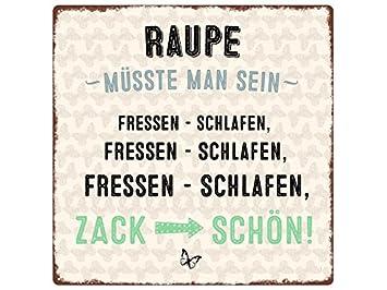 20x20cm Metallschild Turschild Raupe Musste Man Sein Spruch Lustig