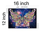 TWBB Diamond Painting Kit 5D DIY Diamond Painting Sets Diamond Painting for Adult or Kid,2019 New Special Shape Diamond (Butterfly Pattern 2)