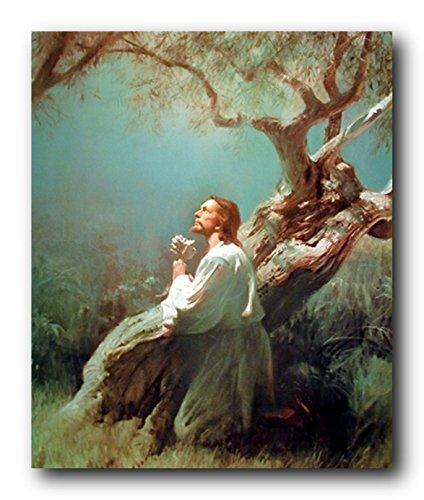Jesus Christ Praying At Gethsemane Picture Art Print Poster (16x20)