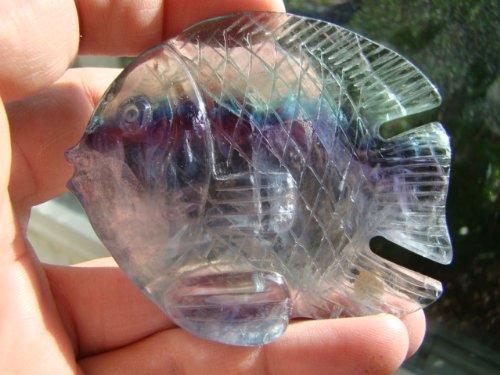 Den7401 Rare Gem Rainbow Fluorite Angel Fish ()
