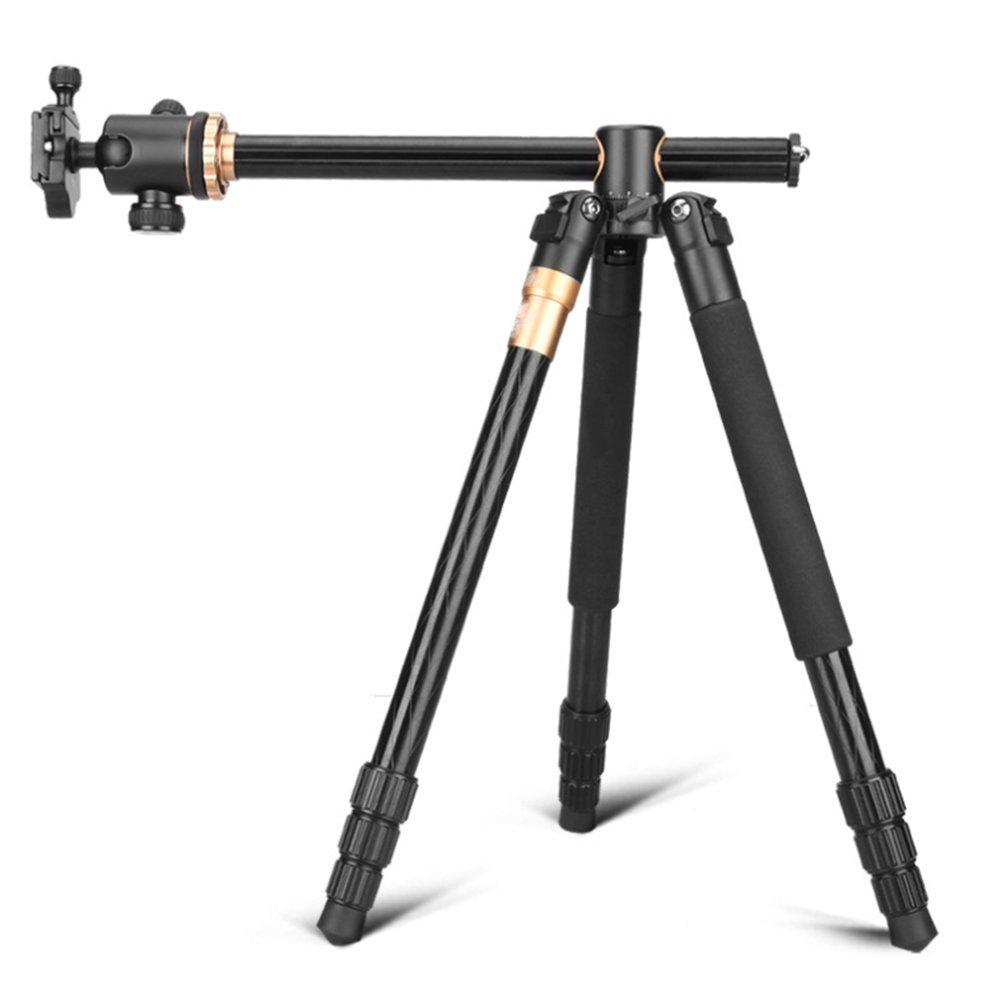 安いそれに目立つ Nclon 三脚 三脚 コンパクト,三脚キット 一脚 B07DBYRT6M 非スリップ フォームを処理します 360。 デジタル一眼レフ カメラ 360 度ボールの頭 卓上スタンド B07DBYRT6M, ラケットプラザ:96a62e01 --- irlandskayaliteratura.org