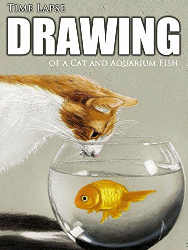 Clip: Time Lapse Drawing of a Cat and Aquarium FIsh