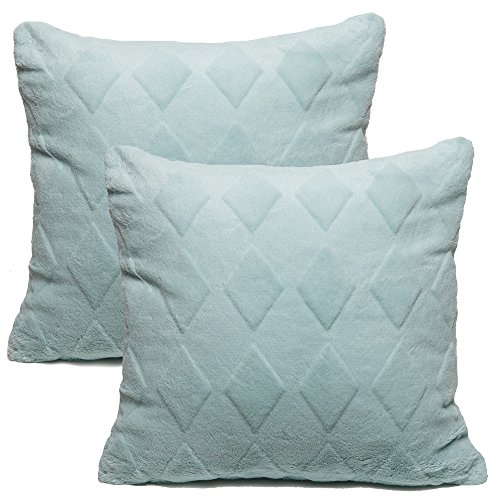Aqua Decorative Pillow - 7