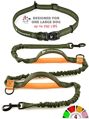 Hands Free Leash Walking Reflective