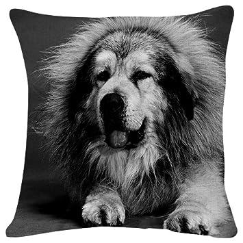 Amazon.com: Bozal para perro pelo peludo – Manta funda de ...