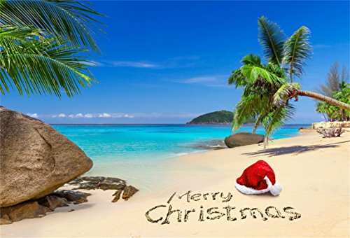 AOFOTO 7x5ft Beach Merry Christmas Backdrop for Photos Tropical Seaside Palm Tree Rock Sand Draw Santa Hat Photography Background 2019 New Year Photobooth Festival Vacation Photo Studio Props Vinyl