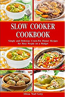 slow cooking properly explained over 100 favourite recipes by page dianne april 16 2009 paperback