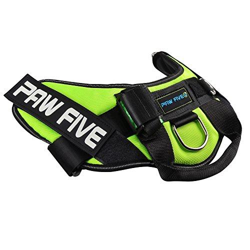 51J9uHJ5wkL. SS500  - Paw Five CORE-1 Reflective No-Pull Dog Harness
