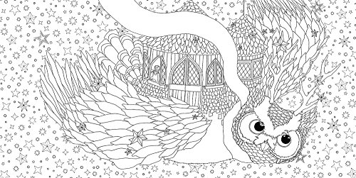 The Time Garden Adult Coloring Books