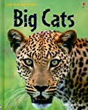 img - for Big Cats (Usborne Discovery) book / textbook / text book