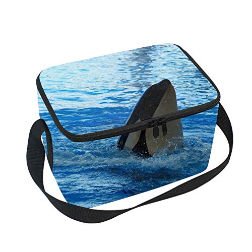 - Lunch Bag Insulated Lunchbox Cooler Pouch Shopper Tote Cute Whales Portable Fashion Handbag for School Work