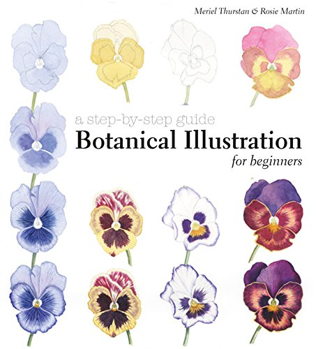 botanical-illustration-for-beginners-a-step-by-step-guide