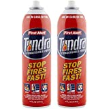 First Alert Fire Extinguisher | Tundra Fire Extinguishing Aerosol Spray, Pack of 2, AF400-2