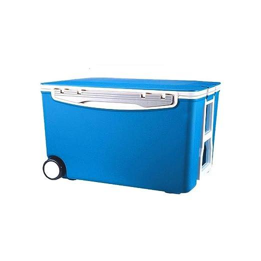 Wyyggnb Cool Box, 40L Hot or Cold Cool Box Mini refrigerador y ...