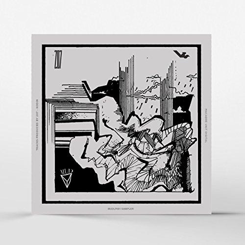 Brainstorm LP Sampler by 207 on Amazon Music - Amazon com
