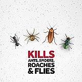 Raid Multi Insect Killer, Kills