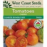 Tomato Seeds - Sunrise Bumble Bee F1 Certified Organic