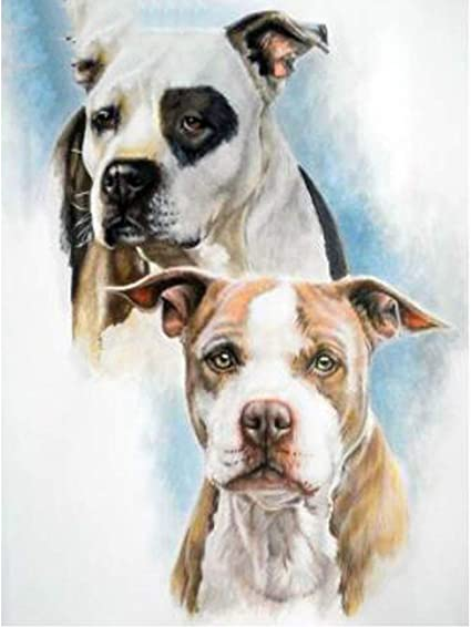24x34cm 5D DIY Diamond Painting Bull Terrier Full Square Punto de Cruz Diamond Mosaic Diamond Embroidery animale Resin Dog