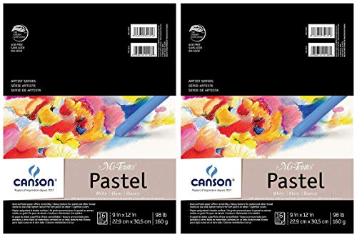 Teintes Pad Mi - 2-Pack - Canson Mi-Teintes Pastel Paper Pad, White with Glassine, Dual Sided Light and Heavy Texture, Top Wire Bound, 98 Pound, 9 x 12 inch, White, 16 Sheets Each Pack