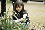 Japanese Movie - Bunny Drop (Usagi Drop) [Japan DVD] BIBJ-8113