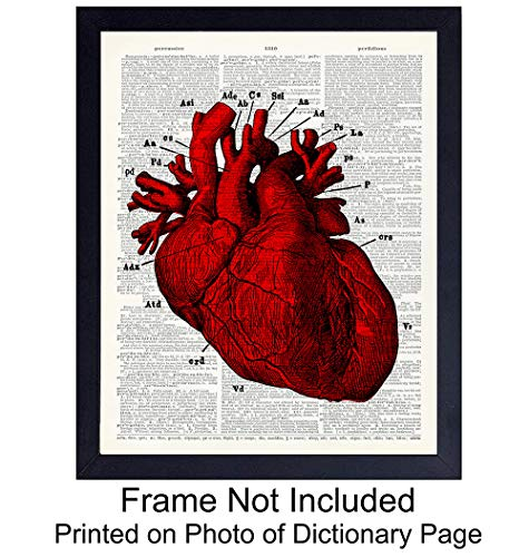 Anatomy Red Heart Wall Art Print on Dictionary Photo - Ready to Frame (8x10) Vintage Photo - Steampunk - Cool Home Decor - Perfect for Classroom and Faculty Room - Great Gift for Doctors and Nurses ()