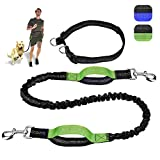 KiddyWoof 2 Dog Leash, 6.25ft Hands Free Dog Leash for Two Dogs with Adjustable Waist Belt and Strong Dual Handle Bungees, for Large Dogs up to 150 lbs, Reflective Dog Leash, Same Security at Night