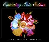 img - for Exploding Into Colour book / textbook / text book