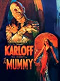 454fbb83a53ea Menacing Mummy Window Poster