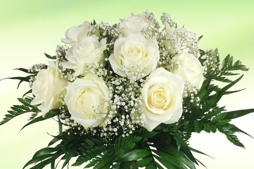 Blumenstrauß weiß 10 Rosen - Blumenversand Rosenbote