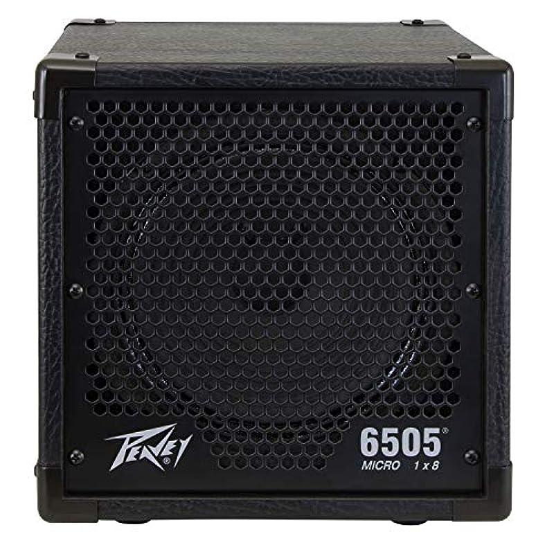 PEAVEY 6505 Piranha 1×8 Cabinet 기타 AMP SPEAKER