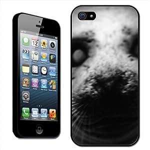 Fancy A Snuggle - Carcasa rígida para iPhone 5, diseño de morro de foca ártica