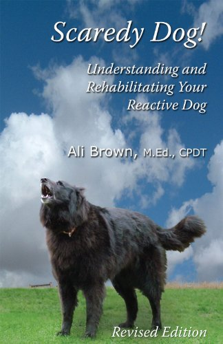 Scaredy Dog! Understanding & Rehabilitating Your Reactive Dog