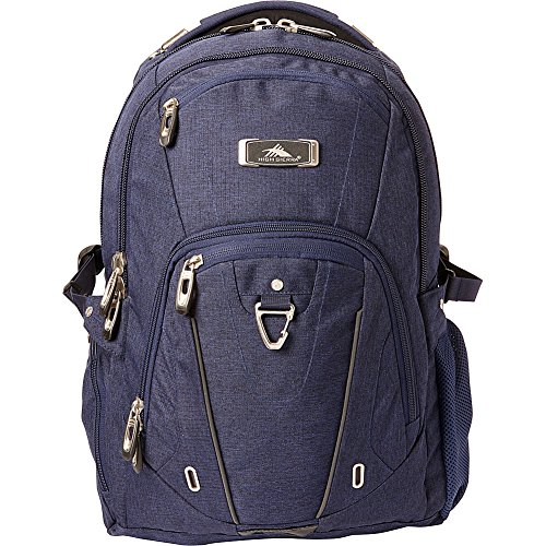 High Sierra Pro Series Laptop Business Backpack- eBags Exclusive (Deluxe Business Backpack)