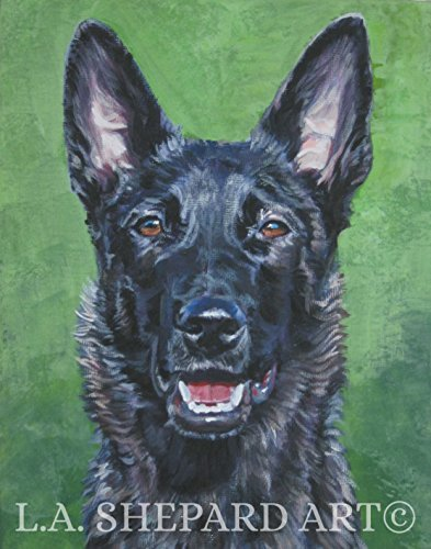 a-dutch-shepherd-dog-art-portrait-print-of-an-la-shepard-painting-11x14