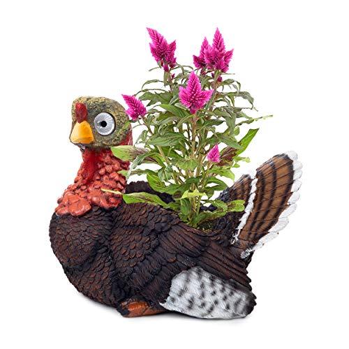 - Turkey Planter Animal Herb Pot | Succulent Holder | Outdoor Indoor Solar Patio Decor | Yard, Window, Kitchen or Deck | Patio Gift | Auto On/Off (Black)