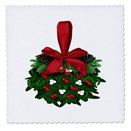 3dRose Anne Marie Baugh - Christmas - Pretty Christmas Mistletoe Ball Illustration - 12x12 inch quilt square (qs_318498_4)