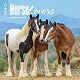 Horse Lovers 2018 7 x 7 Inch Monthly Mini Wall Calendar with Foil Stamped Cover, Animals Horses Equestrian (Multilingual Edition)