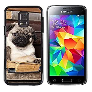LECELL--Funda protectora / Cubierta / Piel For Samsung Galaxy S5 Mini, SM-G800, NOT S5 REGULAR! -- Pug Book Library Cute Puppy Smart Dog --
