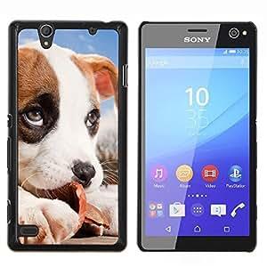 Jack Russell Cachorro Beagle bebé Perro- Metal de aluminio y de plástico duro Caja del teléfono - Negro - Sony Xperia C4 E5303 E5306 E5353