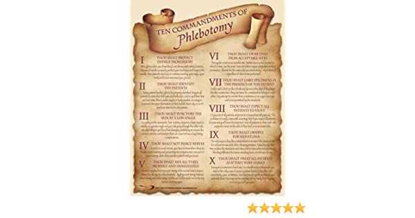 Amazon Ten Commandments Of Phlebotomy Poster Prints Posters